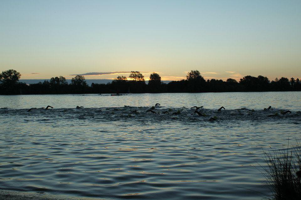 Swimmers swimming in a lake